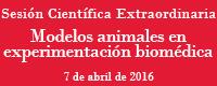 20160404 banner animales