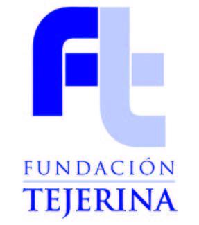 logo tejerina