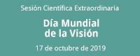 dia mundial vision